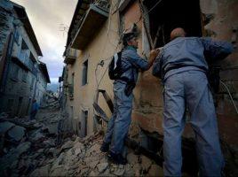 terremoto forestale pugliese 2