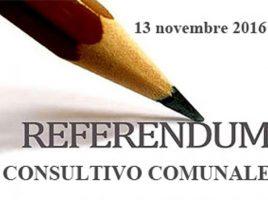 tmp_6550-referendumcomunale01(1)1243445842