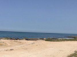 spiaggia-savelletri-torre-canne 1