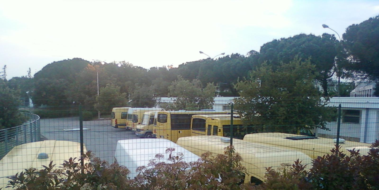 scuolabus pergolo 1