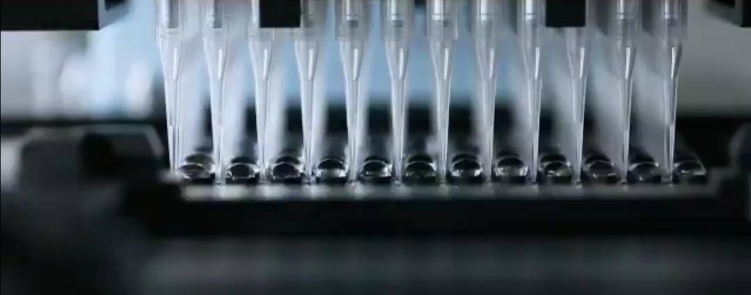 Puglia, vaccini per i 50 59enni: prenotazioni da lunedì pomeriggio, somministrazioni da mercoledì Comunicazione della Regione: anche per chi ha più di 60 anni e non ha ancora aderito